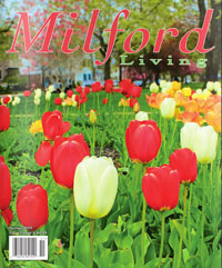 spring-2015-cover