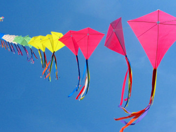 Go Fly a Kite! May 2nd